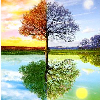 Curso – Interpretación del árbol Genealógico