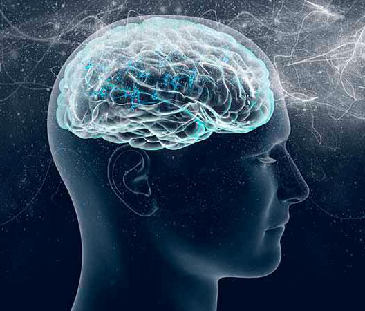 Curso – El funcionamiento de tu mente consciente e inconsciente Online
